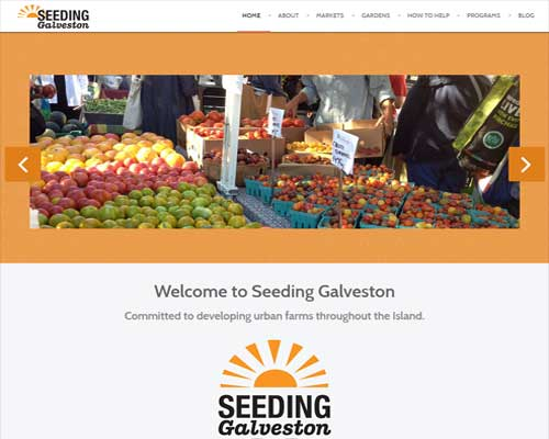 Seeding Galveston